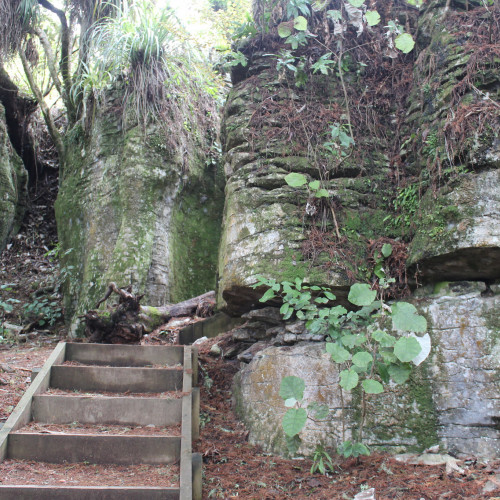 Waitomo Walkway photo