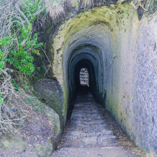 Tunnel Beach Walkway photo