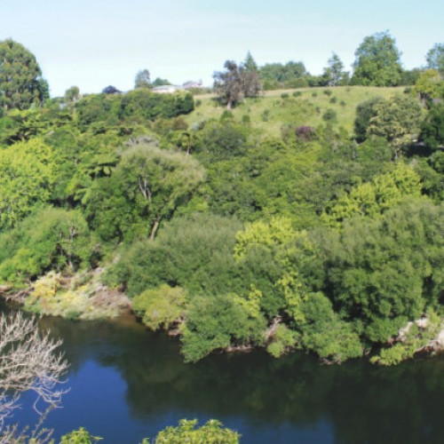 Cambridge-Waikato River Connection photo